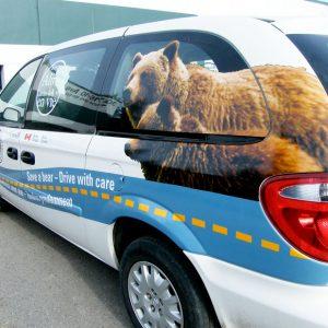 vehicle-wraps